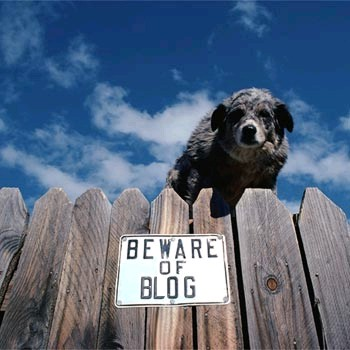 Beware of Blog