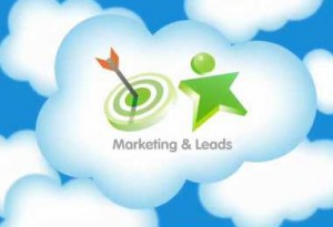 Salesforce.com Marketing & Leads