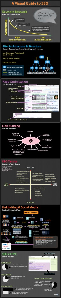 Visual Guide to SEO - Infographic