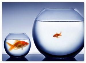 Small Business vs. Big Business B2B Marketing