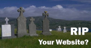 Websites, search engines are far from dead