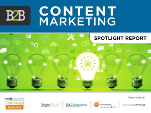 2014 B2B Content Marketing Report
