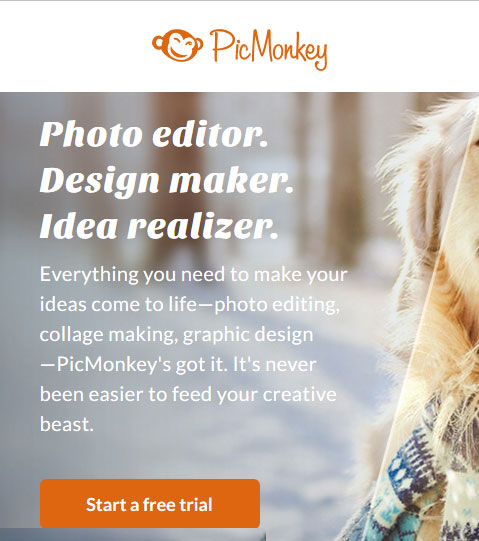 Photo editing and graphic design tool - PicMonkey