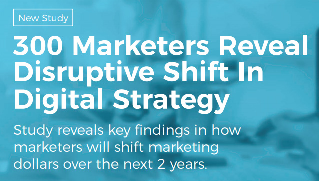 Disruptive Shift in Digital Strategy report