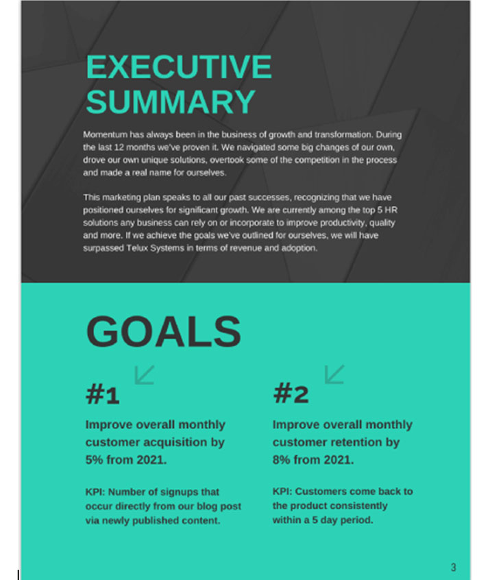Sample executive summary and goals page